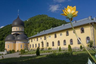 Manastirea Rimetea